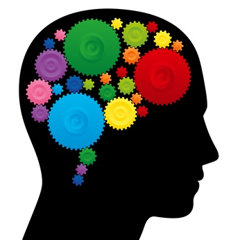 photo : Brain with colorful cog wheels, as a symbol for creativity, ingenuity or intelligence.