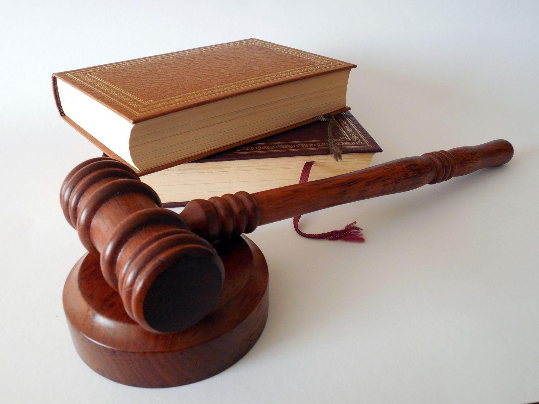 «Un avis de valeur pourrait désormais engager la responsabilité de son auteur», Caroline THEUIL juriste-rédacteur, expert immobilier…