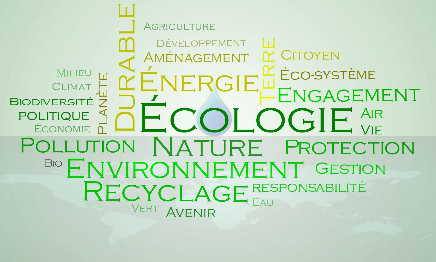 La Boite Immo, une entreprise éco-responsable
