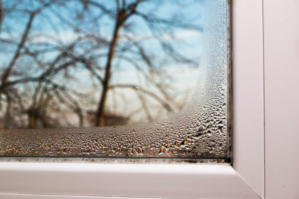photo : humidité maison