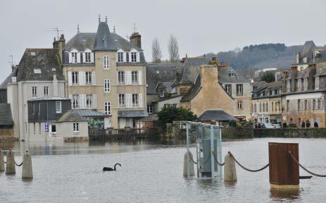 «Inondation : comment informer vos clients ?», Dominique Boussuge, Pathologiste – Expert technique & Scientifique en Ouvrages Bâtis
