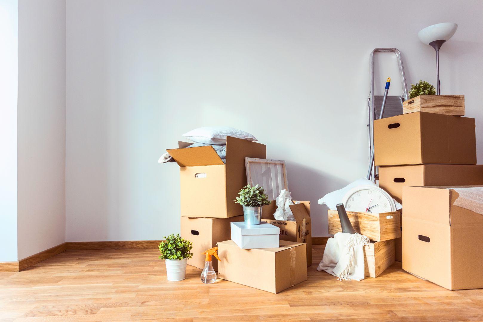 Papernest s'impose comme le partenaire n°1 des professionnels de l'immobilier
